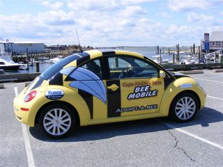 Bee mobile d