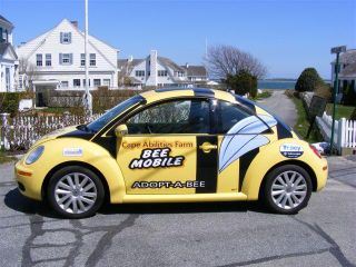 Where is Bee mobile 037